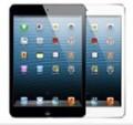 iPad mini 2 Retina 显示屏